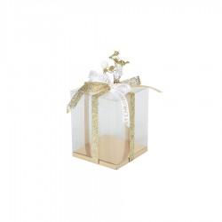 Διάφανο κουτί με χρυσή βάση 12x12x15εκ.